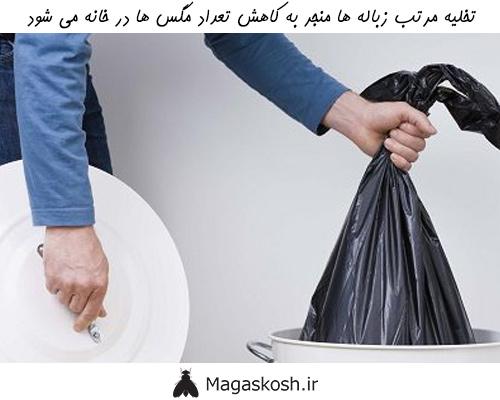 زباله ها منبع غذایی جذابی برای مگس ها هستند